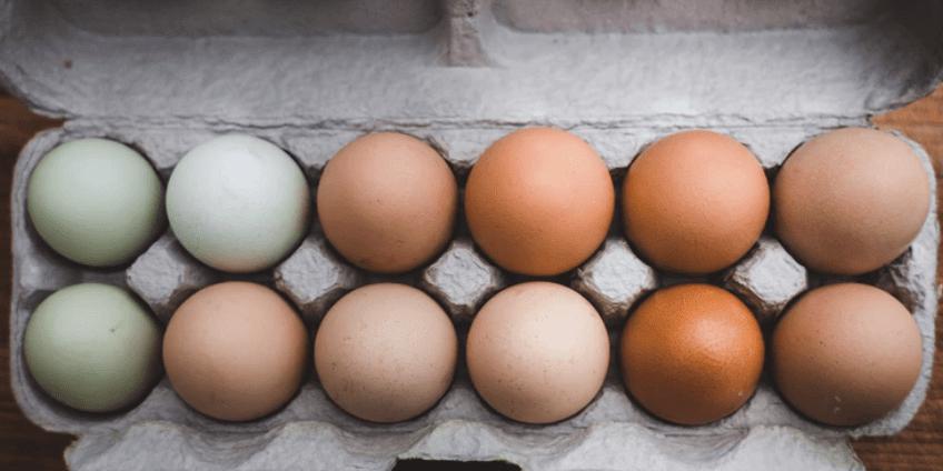 'No-Kill' Eggs Go On Sale