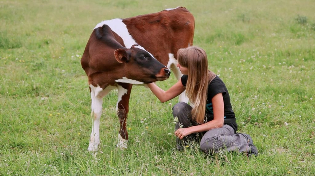 A still from Vegan Documentary 'H.O.P.E - What You Eat Matters' where a woman is showing compassion for a cow in a farm