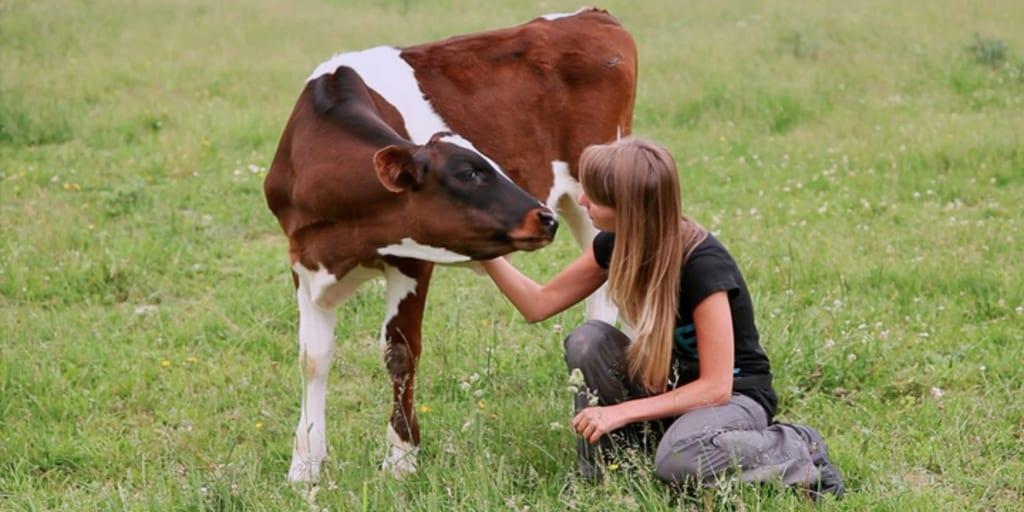 New Vegan Documentary H.O.P.E. Battles To 'Make Slaughterhouses Obsolete'
