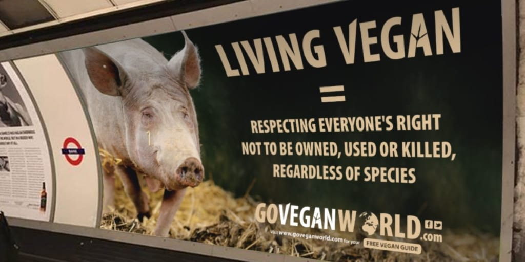 Huge 'Go Vegan' Ad Campaign Featuring Giant Posters And Video Messages Launched