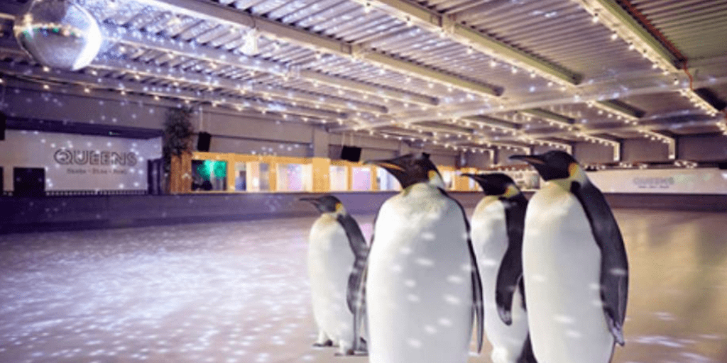 'Cruel And Tacky' Ice Skating With Penguins Event Cancelled After Backlash