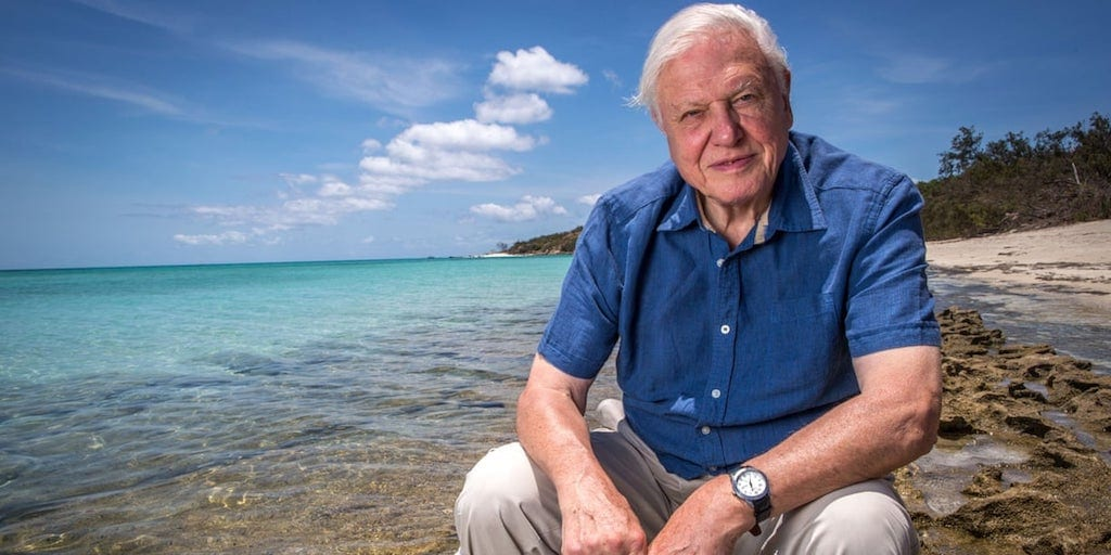10 Times Sir David Attenborough Was Hilarious, Inspiring, Terrifying and Adorable