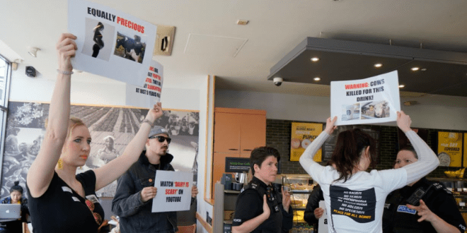 Vegan Activists Storm Starbucks Chanting 'Not Your Mum, Not Your Milk!'