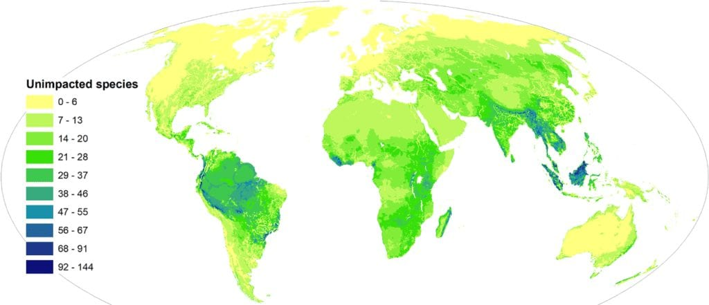 Report- maps show how 1,200 species are 'almost certainly' doomed to extinction