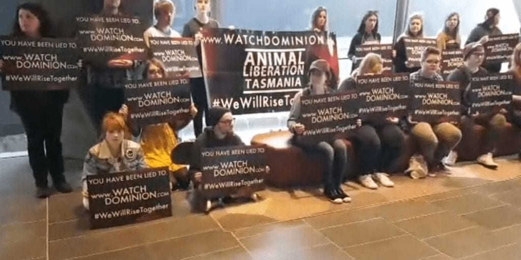 Protesters made a deal to save three lambs from slaughter as demonstrations swept through Australia