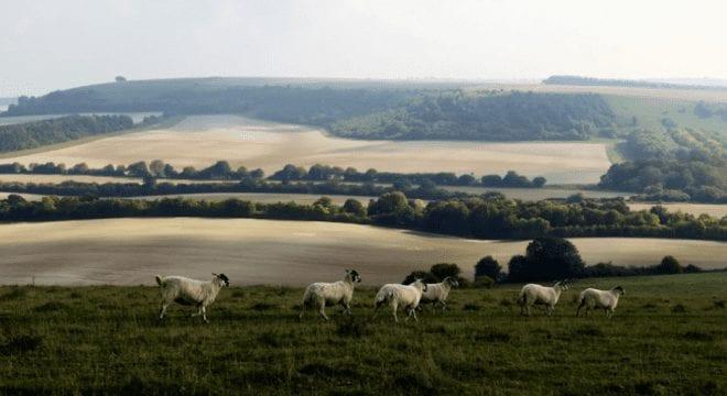 UK_ClimateChange