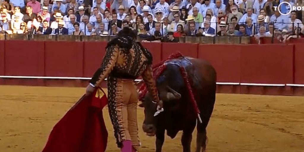 Activists Slam 'Malicious' Matador For Wiping Bloody Tears From Injured Bulls Face Before Killing It