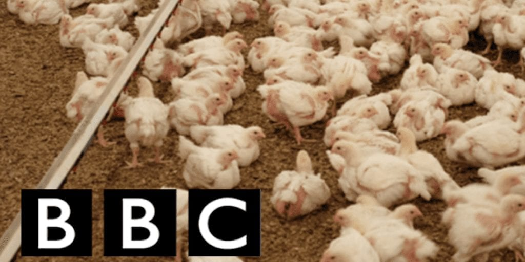BBC host wants to suppress veganism by teaching animal agriculture in schools