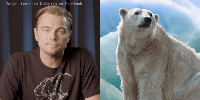 Video: Leonardo DiCaprio produces new HBO climate change documentary 'Ice on Fire'