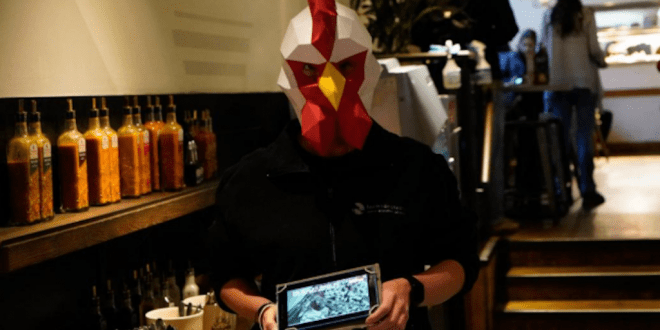 Masked vegan activists storm Nando's to show customers slaughterhouse videos