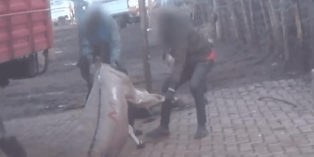 Video Investigation Reveals Horrific Abuse In A Donkey Slaughterhouse Used To Make Sweets And Medicine