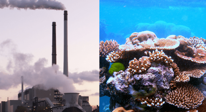 coal mining site to be built near the Great Barrier Reef