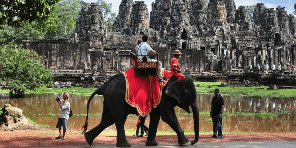 Cambodia bans elephant rides at Angkor Wat