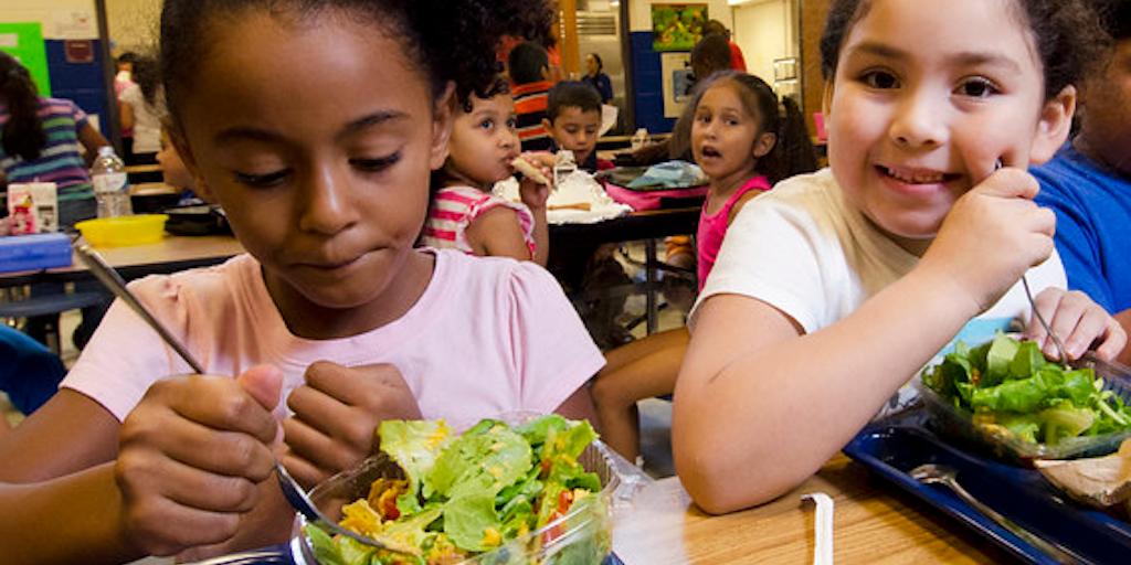 Sweden now has a totally vegan school