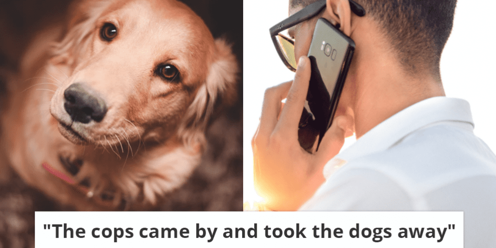 The-cops-came-by-and-took-the-dogs-away