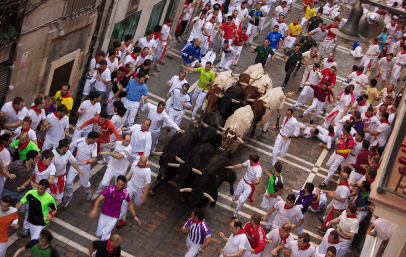 protest against bulls being tortured and killed in Spain's Running of the Bulls festival
