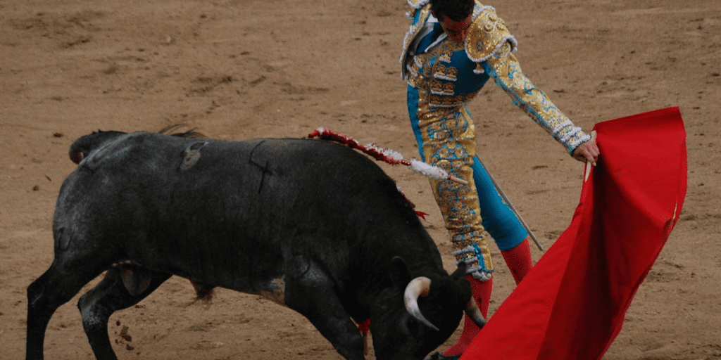 Spanish bullfighting is in rapid decline
