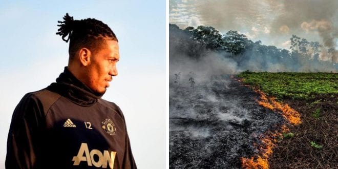Footballer Blames Cattle Farming for Amazon Fires