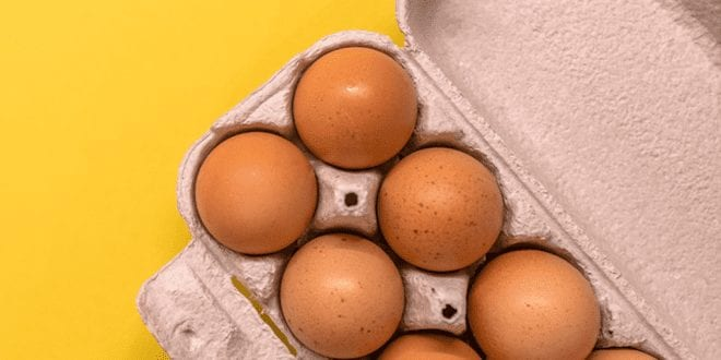 1 in 5 Brits think chicken eggs are vegan
