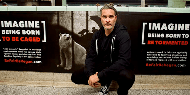 Joaquin Phoenix takes part in vegan protest on his way to winning award at Toronto Film Festival