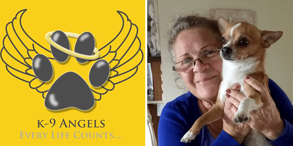 Vegan 'supergran' to walk 120 miles non-stop for dog charity
