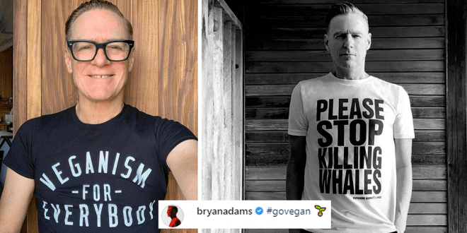 Vegan singer Bryan Adams Killing animals for food is f up the planet
