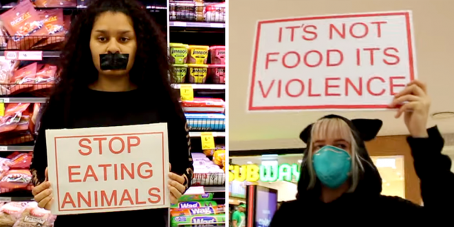 WATCH Angry meat eaters tell peaceful vegan protesters 'you disgust me' as they block meat section