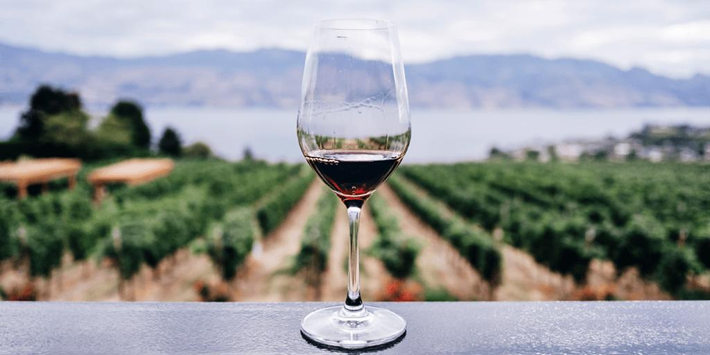 Why is wine not always vegan