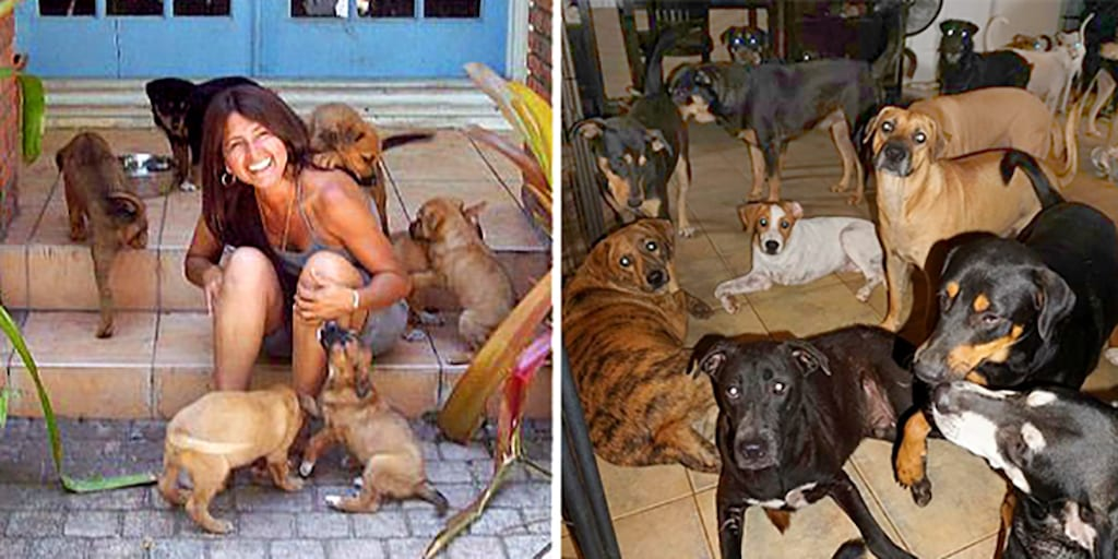 Woman saves 97 dogs from hurricane