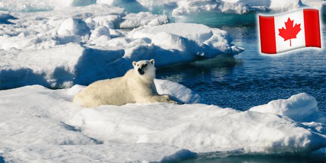 Canada turns 165,000 miles of sea into a sanctuary