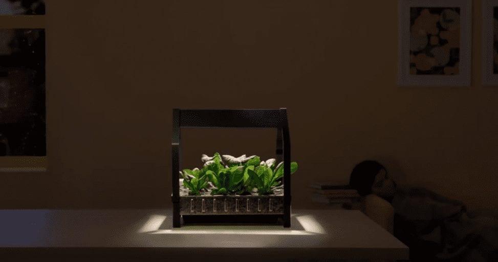 IKEA's indoor garden let's you grow vegetables all year round