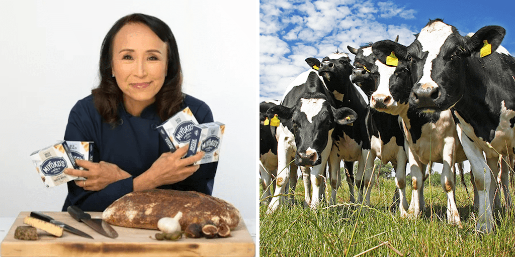 Miyoko's Creamery to help dairy farms move into plant-based agriculture in a win-win opportunity
