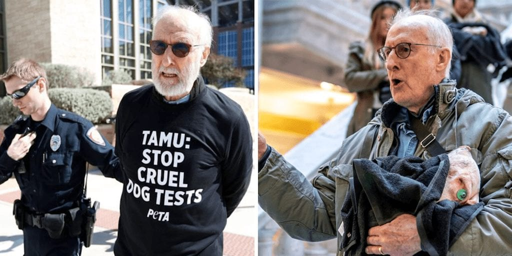 Vegan actor James Cromwell arrested for protesting cruel animal testing