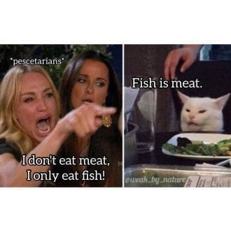 Fish is meat