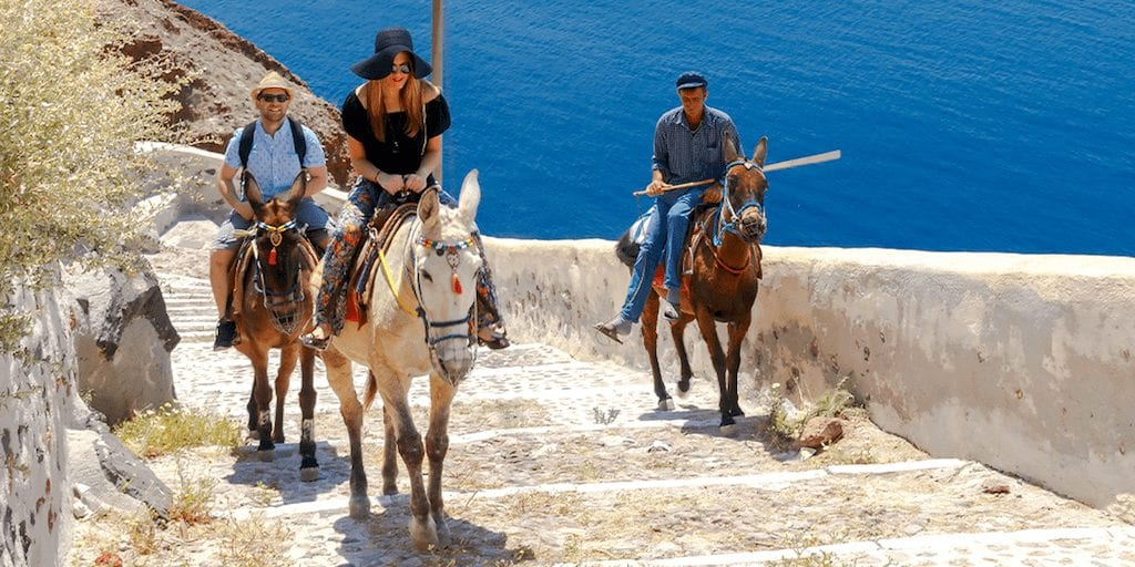 Heavy tourists who ride donkeys in Greece can be fined £25,000 under new laws