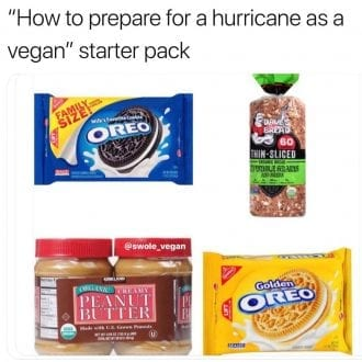 How to prepare for a hurrican as a vegan starter pack