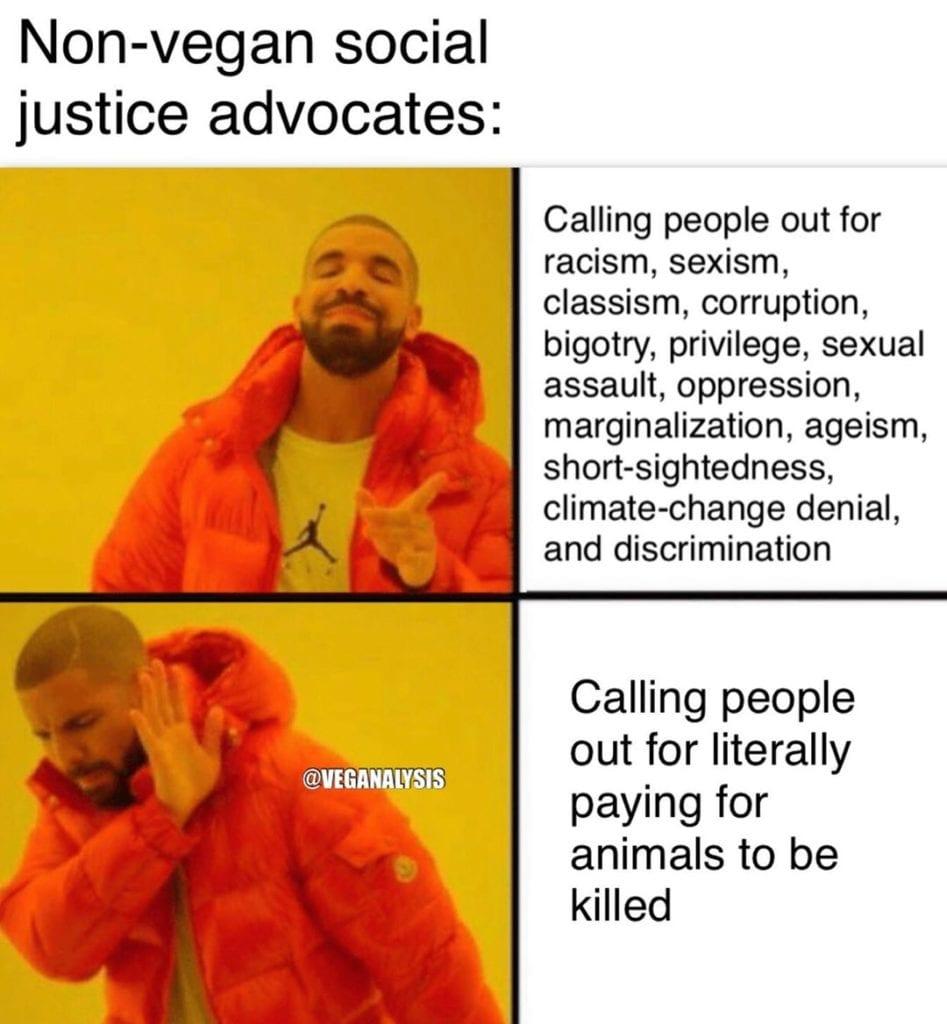 Non-vegan social justice advocates_TotallyVeganBuzz