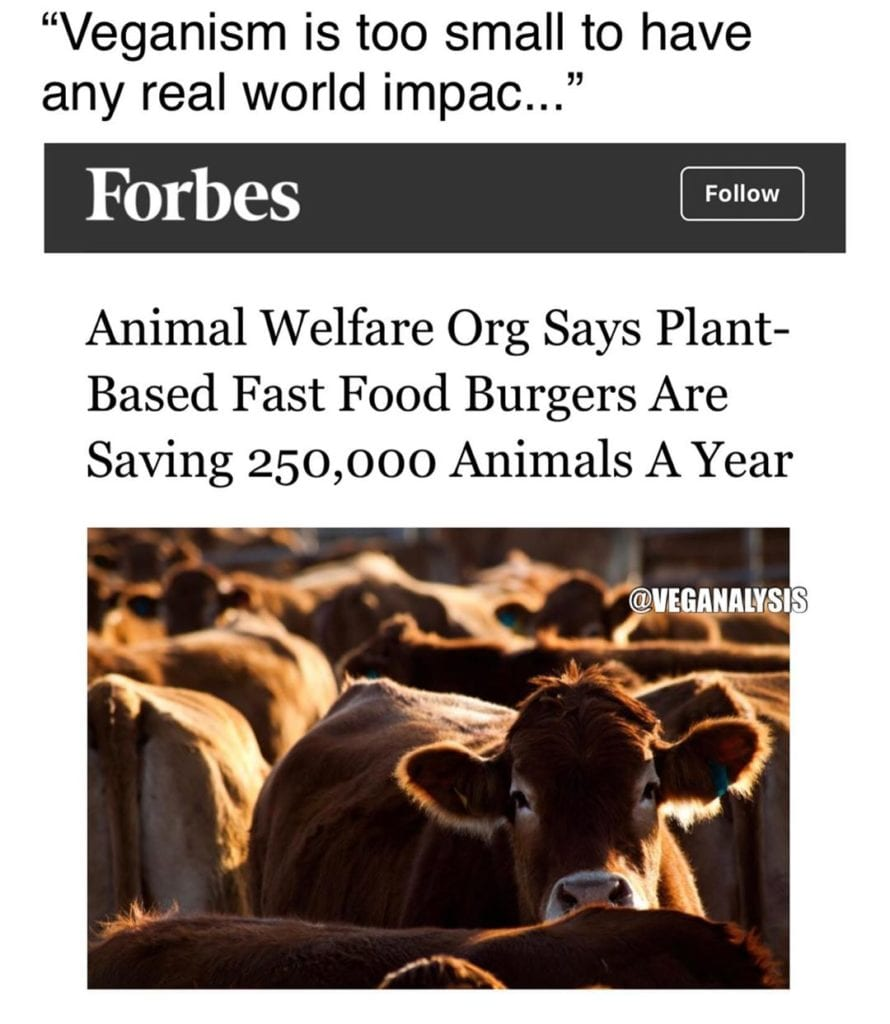 Veganism is too small to have any real world impact