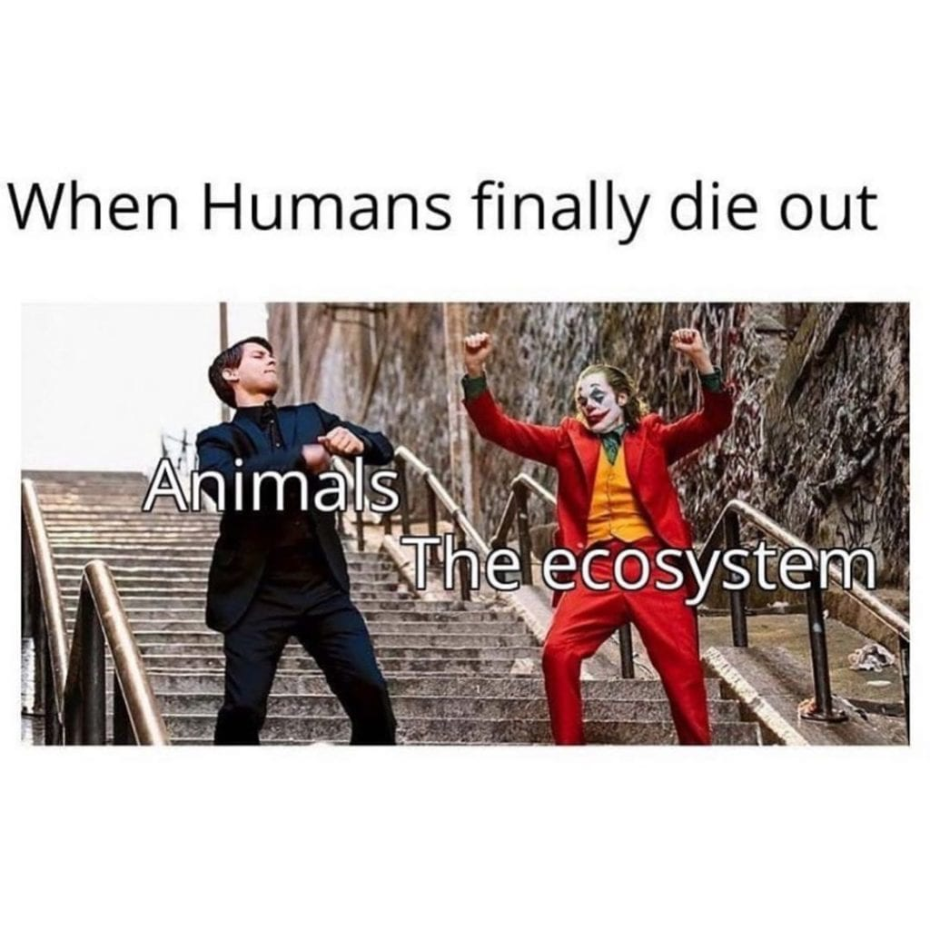 When Humans finally die out