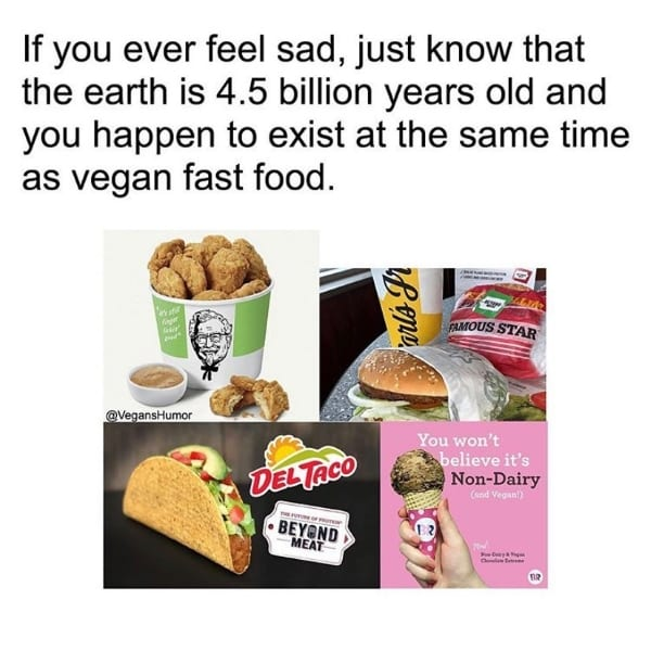 If you ever feel sad about being vegan