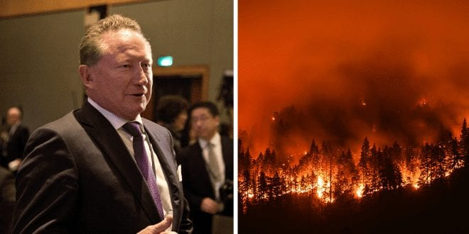 Mining billionaire Andrew Forrest claims Australian bushfires were caused by arsonists