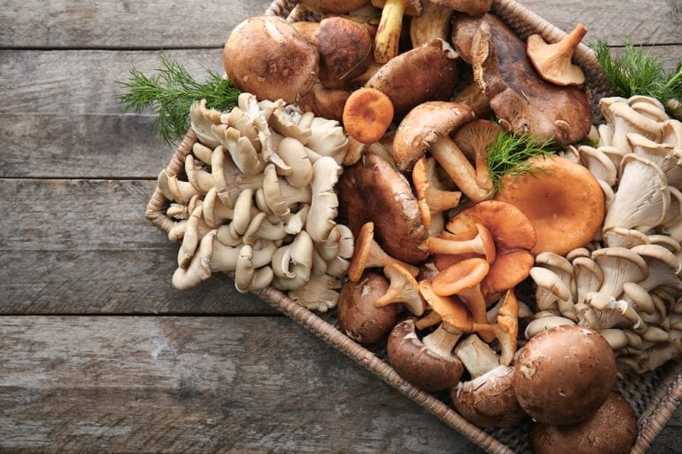 Mushroom sale skyrocketing at Tesco