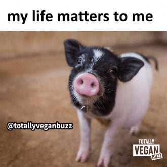 My life matters to me
