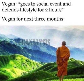 Vegan for the next three months