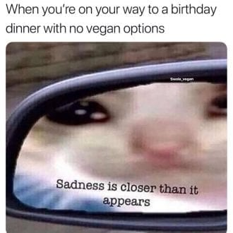When youre on your way to a birthday dinner with no vegan options_TotallyVeganBuzz