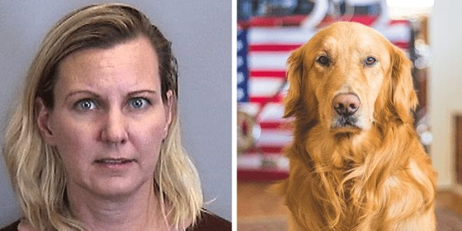 Woman charged for drowning her Labrador in the bath