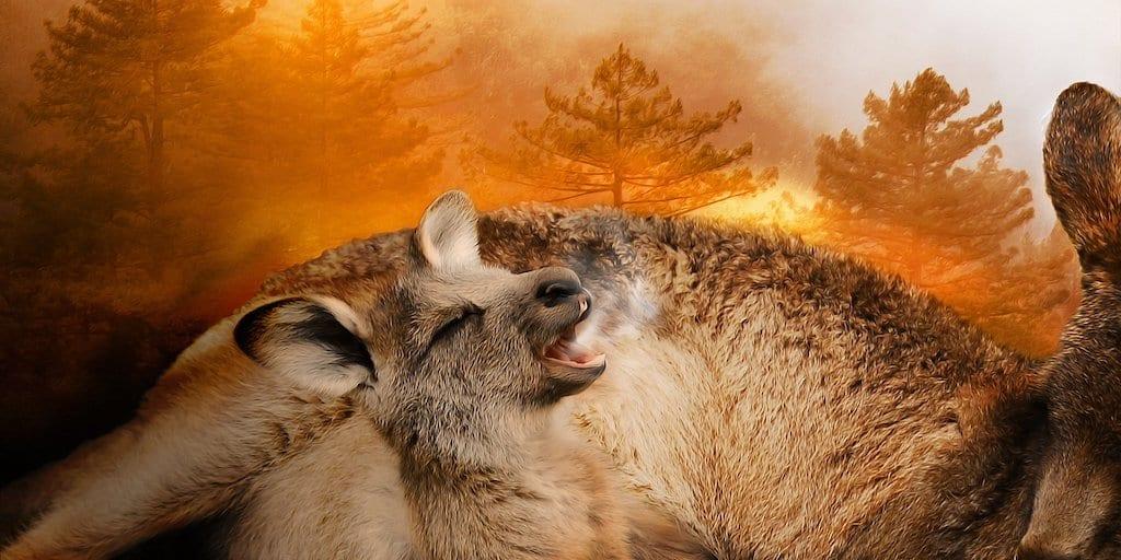 holocaust of destruction' on Australia