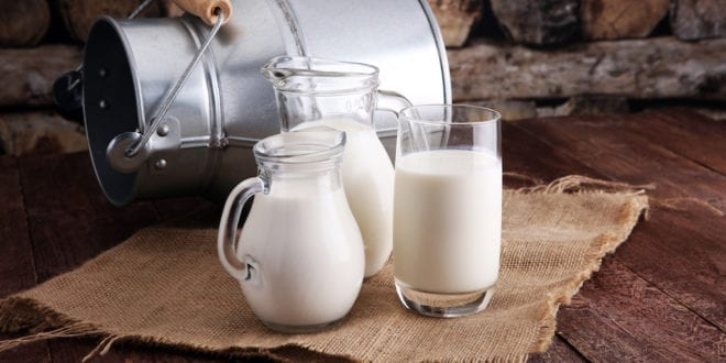 2 cups of milk a day can increase your breast cancer risk by 80%