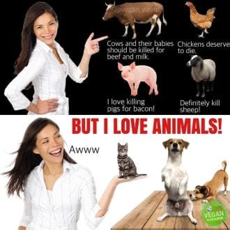 But I love animals