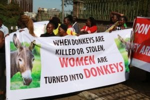 Commercial slaughter of donkeys banned in Kenya